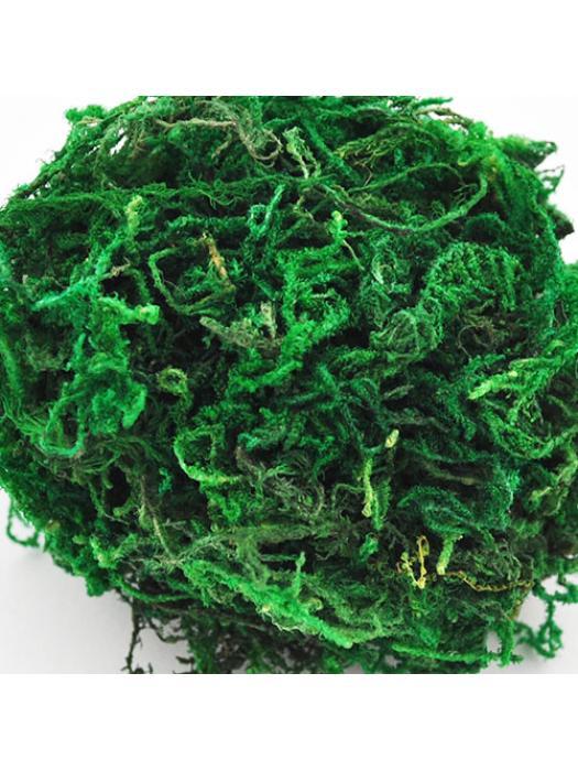 Moss green natura