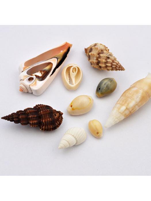 Shell mix 10 g